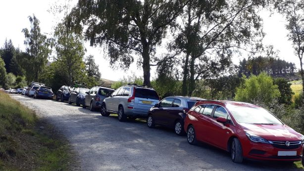 Cars parked along rural road
